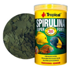 TROPICAL Super Spirulina Forte 36% - pokarm roślinny dla ryb
