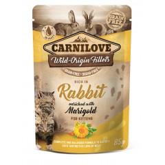 CARNILOVE CAT Pouch Kitten Rabbit and Marigold 85g