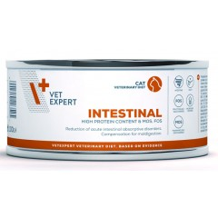 VETEXPERT 4T Vet. Diet Cat Intestinal 100g (puszka)