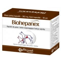 BIOWET Biohepanex 40 kaps.
