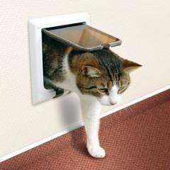 TRIXIE Drzwi dla kota - trzy funkcje pracy Białe