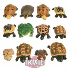 TRIXIE Dekoracja akwarium - Zestaw żab i żółwi 12 szt.