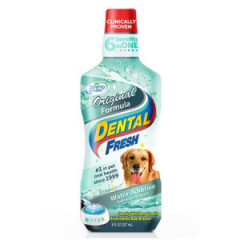 SYNERGY LABS Dental Fresh Original Formula