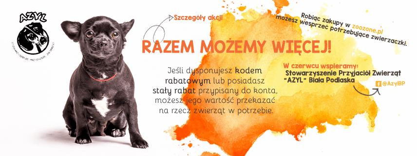 """W czerwcu wspieramy Stowarzyszenie Przyjaciół Zwierząt """"AZYL"""" - Biała Podlaska"""